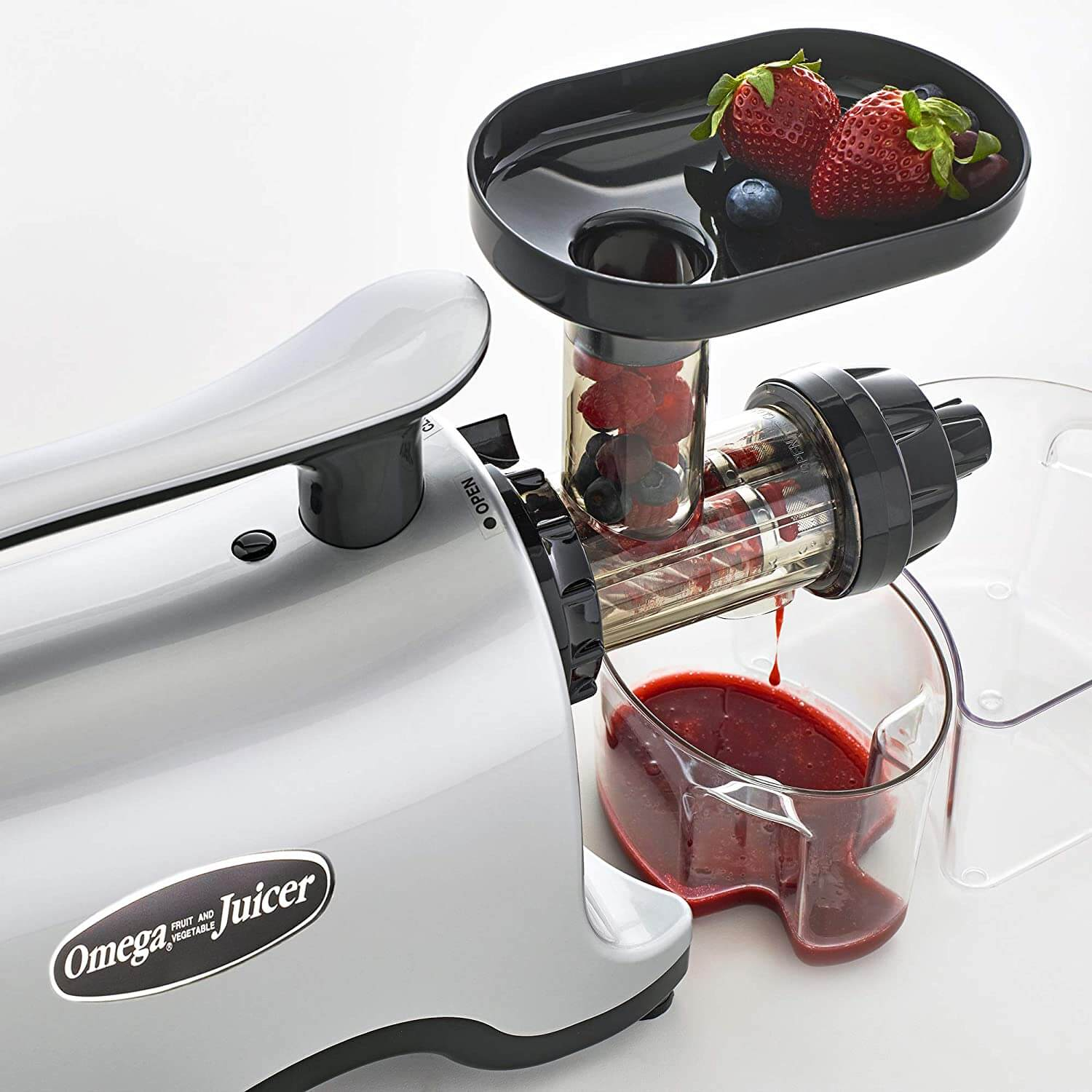 You Need to Know What is a Twin Gear Juicer